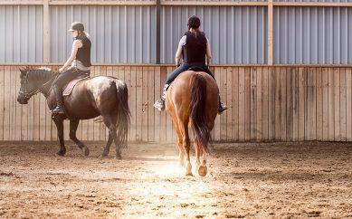 Rideefterskole hos Bråskovgård