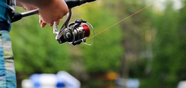 Er fiskelinen vigtig, når man skal fiske?